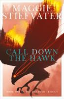 Call-down-the-hawk-:-the-first-book-in-the-dreamer-trilogy